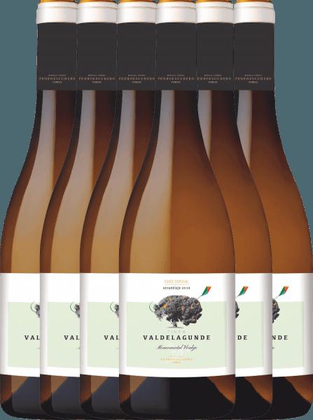 6er Vorteilspaket - Valdelagunde Cuvée Especial Verdejo 2020 - Pedro Escudero