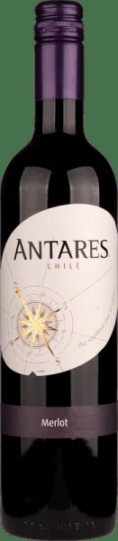 Antares Merlot Central Valley DO 2019 - Santa Carolina von Santa Carolina