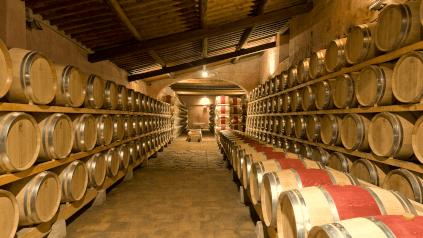 Castello di Nipozzano Cellars
