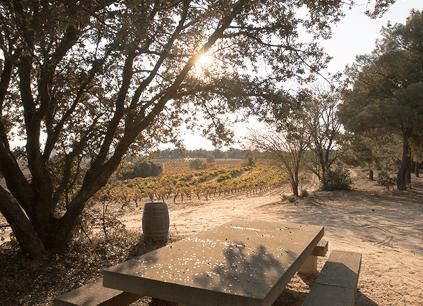 Ein Platz zum Träumen bei La Horra