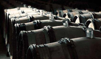 In the wine cellar of William Fevre