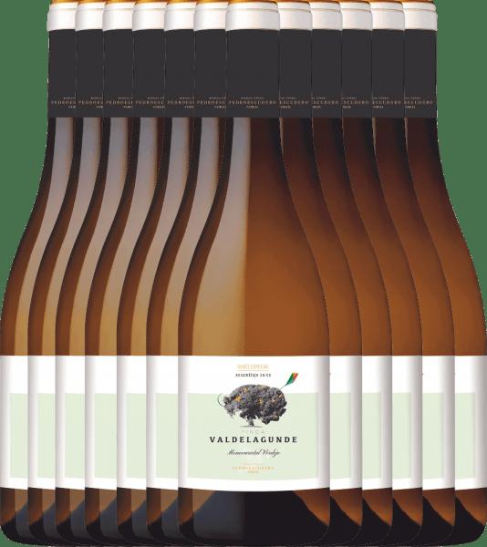 12er Vorteilspaket - Valdelagunde Cuvée Especial Verdejo 2020 - Pedro Escudero