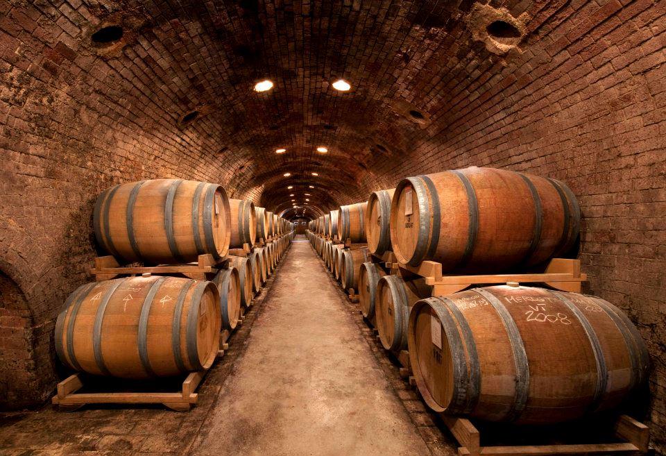 Bidoli barrel cellar