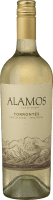 Torrontes Salta 2019 - Alamos