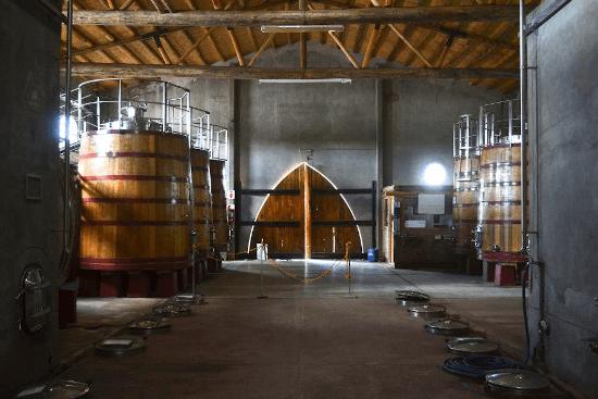 Im Weinkeller der Domaine Bousquet