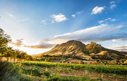 Panorama von Stellenbosch