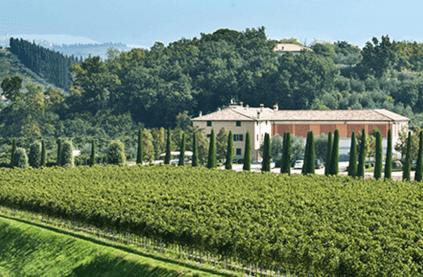 Bolla winery