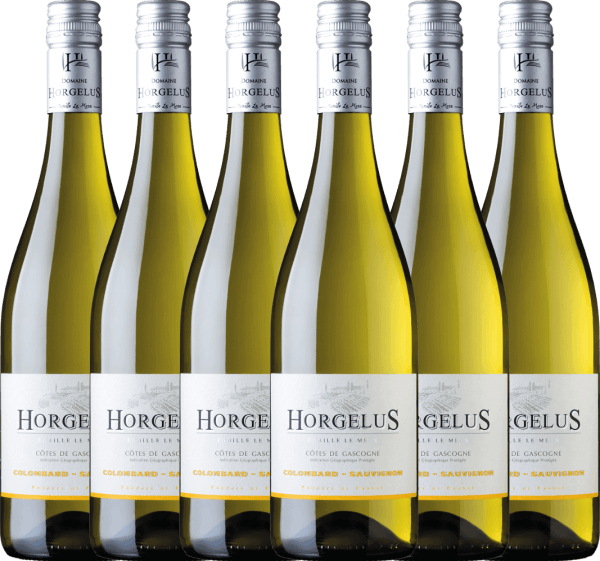 Our top seller Horgelus Blanc is a French white wine made from the Colombard and Sauvignon Blanc grape varieties. A perfect example of a fresh, fruity white wine with its own characteristics and pleasant length. The Horgelus Blanc is an ideal wine for the summer, but also a pleasure to fish or seafood. Buy this white wine from France now in our practical 6-pack. More information about this summer wine can be found in the article of Horgelus Blanc from Domaine Horgelus.