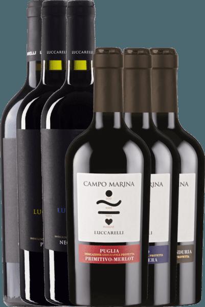 6er Kennenlernpaket - italienische Rotweine von Luccarelli