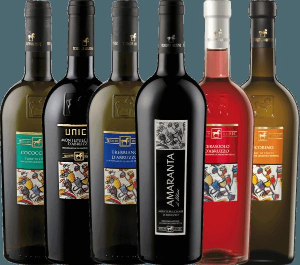 Tenuta Ulisse ist ein dynamisches und modernes Weingut, das jeden Wein mit großer Leidenschaft, Qualität und Engagement vinifziert. Einheimische Rebsorten werden wiederentdeckt und internationale Sorten neu interpretiert – dadurch entwickelt jeder Wein seine ganz eigene Persönlichkeit, die Sie auf jeden Fall kennenlernen sollten. Mit diesem Kennenlernpaket tauchen Sie in die italienische Welt der Tenuta Ulisse aus Abruzzen ein. In diesem Paket stellen wir Ihnen zwei Rotweine, drei Weißweine und einen Roséwein vor. Das 6er Kennenlernpaket - Weine von Tenuta Ulisse beinhaltet: Die Rotweine: 1 Flasche: AMARANTA Montepulciano d'Abruzzo DOC (trocken - 14,0 Vol%) 1 Flasche: ULISSE Montepulciano d'Abruzzo DOP (trocken - 14,0 Vol%) Die Weißweine: 1 Flasche: ULISSE Pecorino Terre di Chieti (trocken - 13,0 Vol%) 1 Flasche: ULISSE Trebbiano d'Abruzzo DOC (trocken - 13,0 Vol%) 1 Flasche: ULISSE Cococciola Terre di Chieti IGP (trocken - 13,0 Vol%) Der Roséwein: 1 Flasche: ULISSE Cerasuolo d'Abruzzo DOC (trocken - 13,0 Vol%)