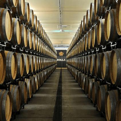 cellar of Bolla