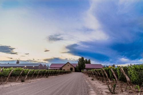 Das Weingut Susana Balbo in Mendoza