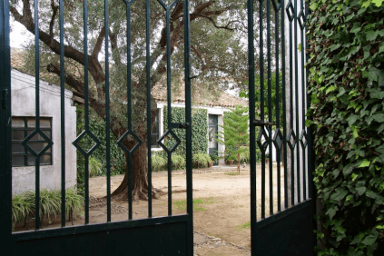 View into the winery courtyard