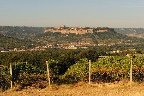 Panorama of Orvieto