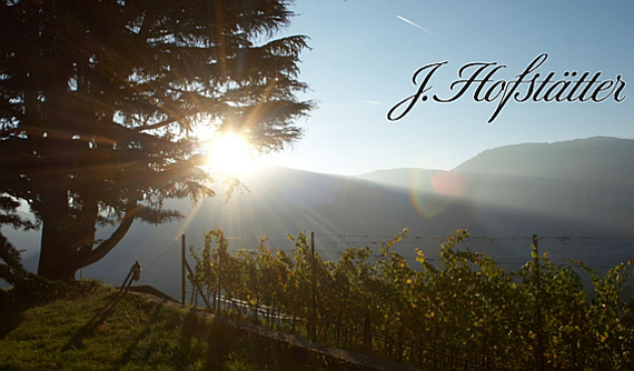 J.Hofstaetter Weingut Tenuta